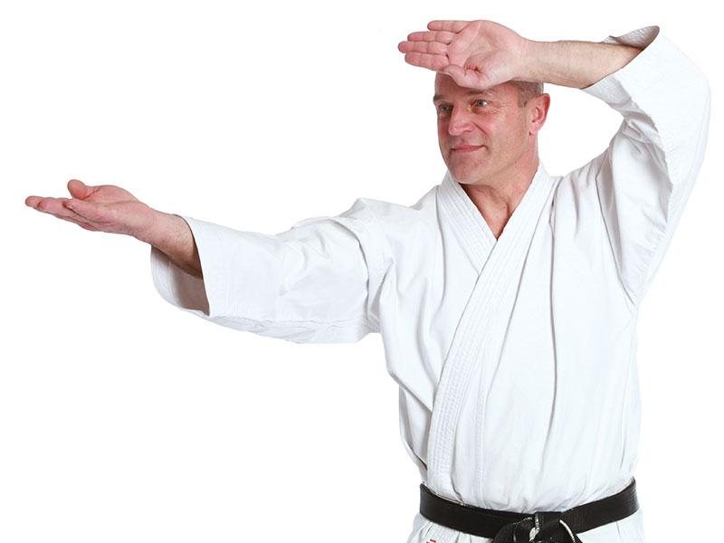 karate-prof